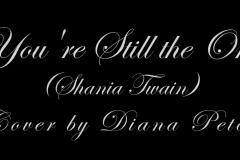 #Diana Petcu, Video, March 16, 2019 (32)