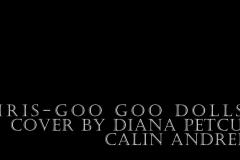 #Diana-Petcu-Video-May-18-2019-9