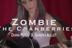 #Diana-Petcu-Video-July-27-2019-1