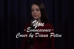 #Diana Petcu, Video, February 16, 2019 (22)